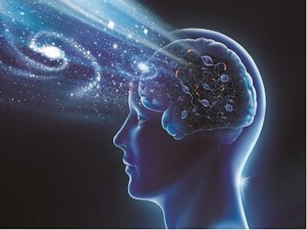 2021-自學課程-計算神經科學(7-12月)