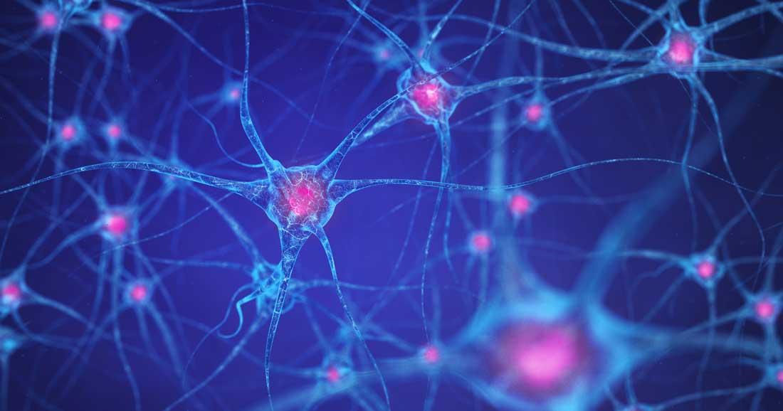 2021-自學課程-細胞神經科學(7-12月)